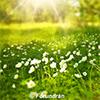 april-maj15_hemsida_mejl-100