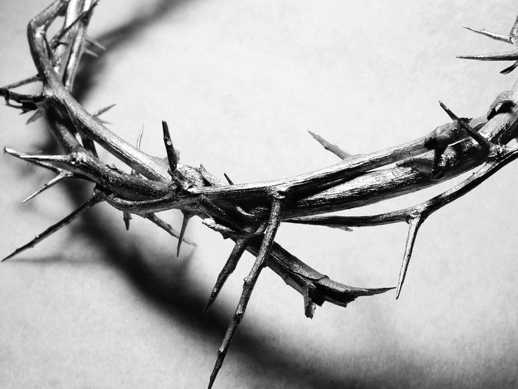 crown-of-thorns1